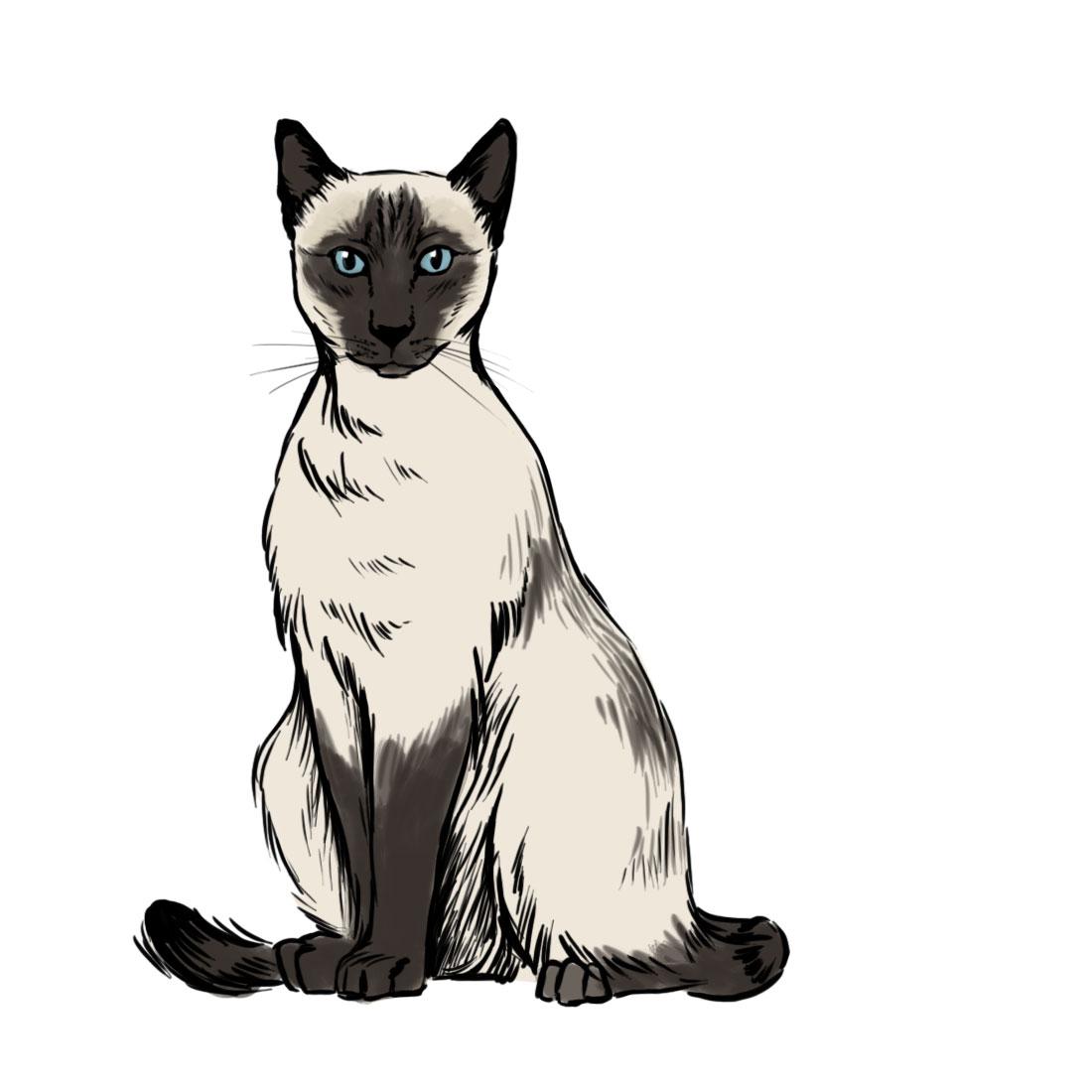Siamese Cat clipart Siamese Cat drawings Cat #3