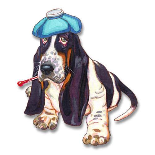 Pets clipart sick Clip clip Sick art dog