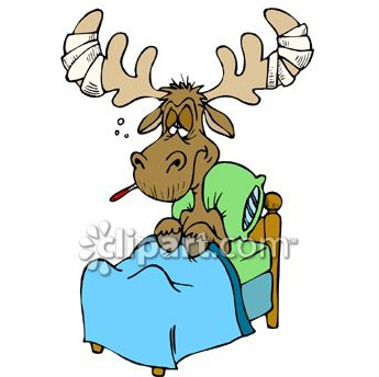 Sick clipart moose I've on not been drugs