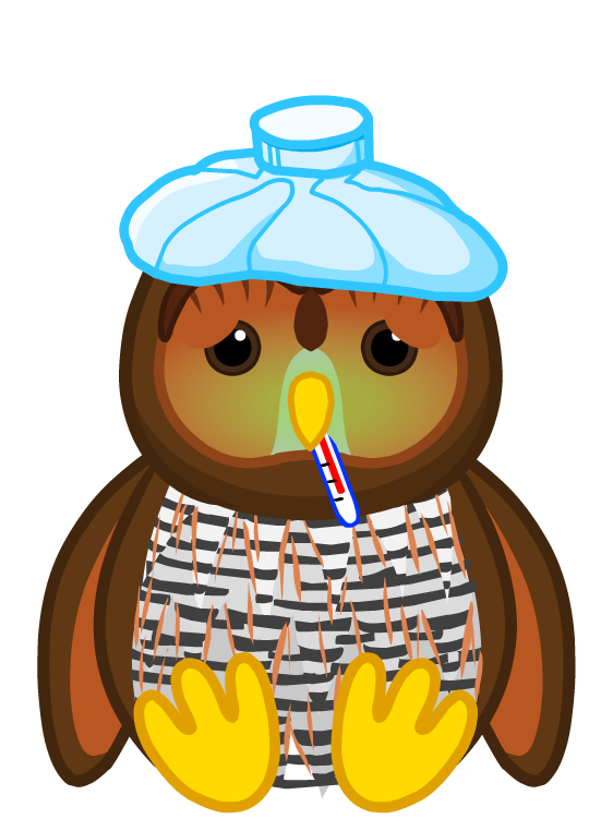 Barred Owl clipart face Insider Sick Webkinz Sick Wiki