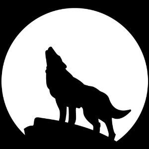 White Wolf clipart wolf head Wolf on Wolf 25+ Best
