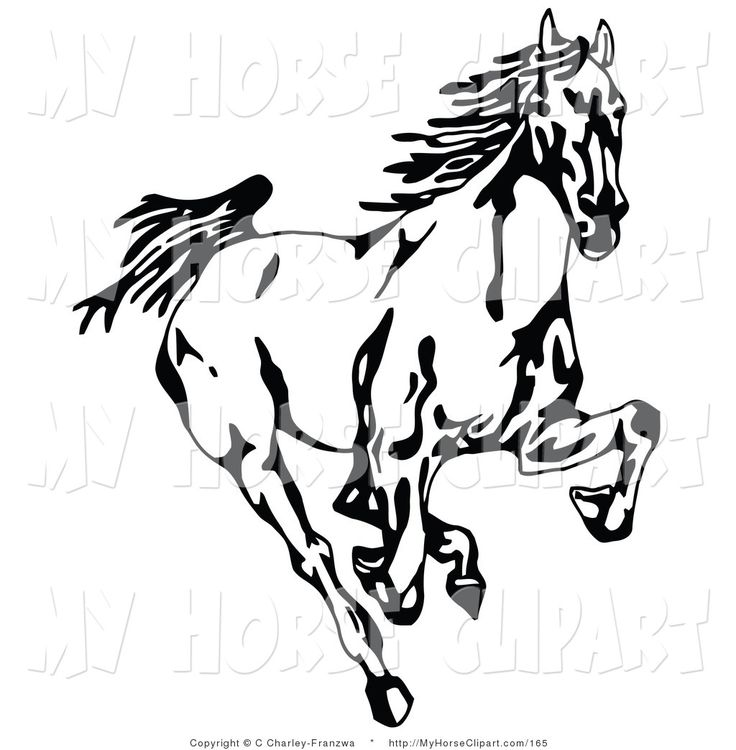 Silk clipart black and white Forward images best Painting Mustang