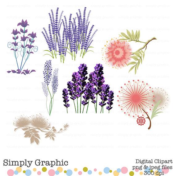 Silk clipart purple Flower c145 Plant Lavender Digital
