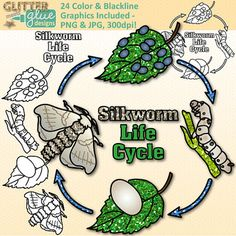 Silk clipart silkworm The Silkworm Groups Art Life