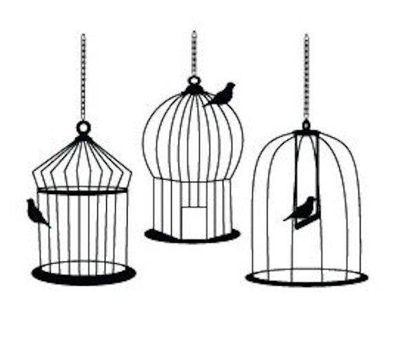 Simple clipart bird cage Cages Bird  Drawings Bird