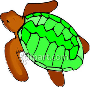Simple clipart turtle #11