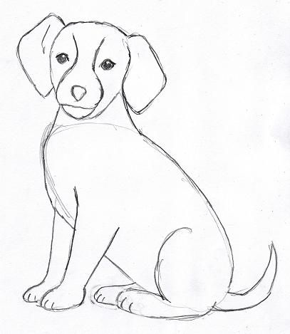 Drawn puppy real dog You 4 dogs ideas and