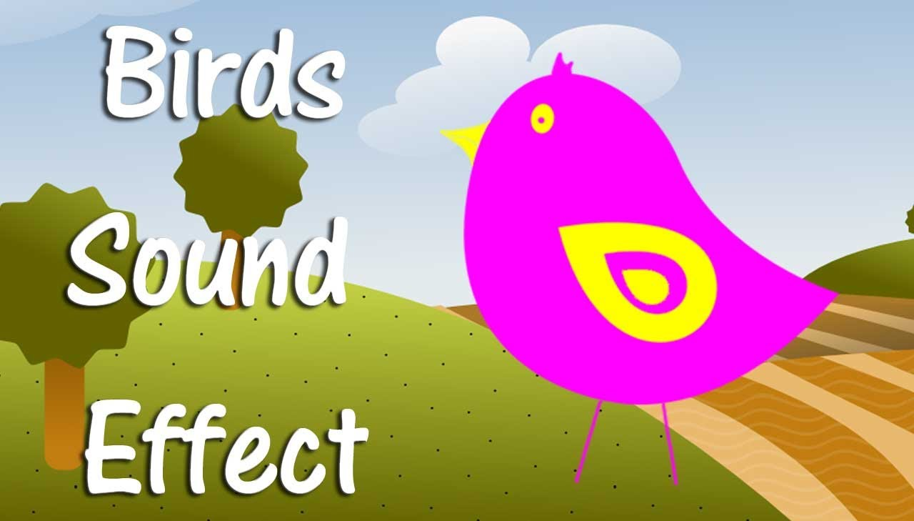 Singer clipart pleasant sounds Effect Singing Sound Bird Bird