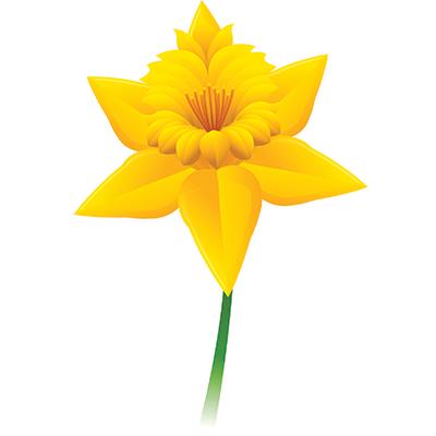 Single clipart yellow flower Yellow Flower flower The Test