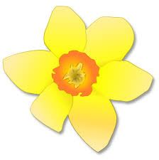Single clipart yellow flower Image spring result art images