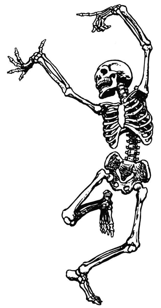 Bones clipart skeleton body On 2 art 5 free