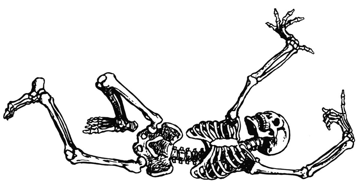 K.o.p.e.l. clipart skeleton Clipartix Pictures halloween Free Free