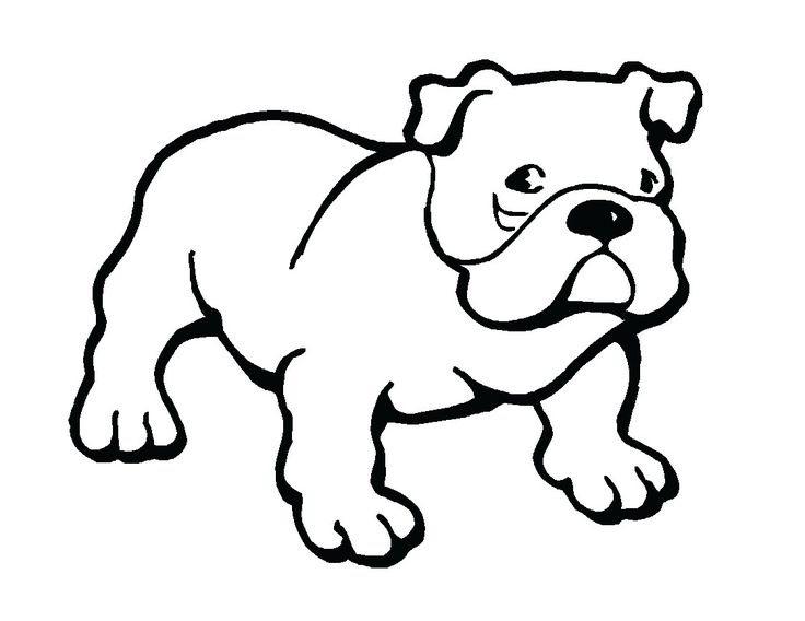 Sketch clipart british bulldog από για Pinterest Πάνω Bulldog