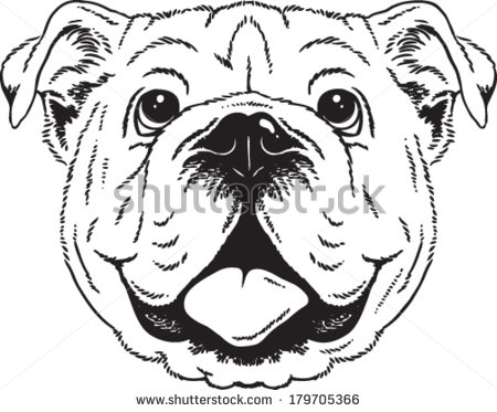 Sketch clipart british bulldog ClipartFox clipart ideas clipart ClipartFox