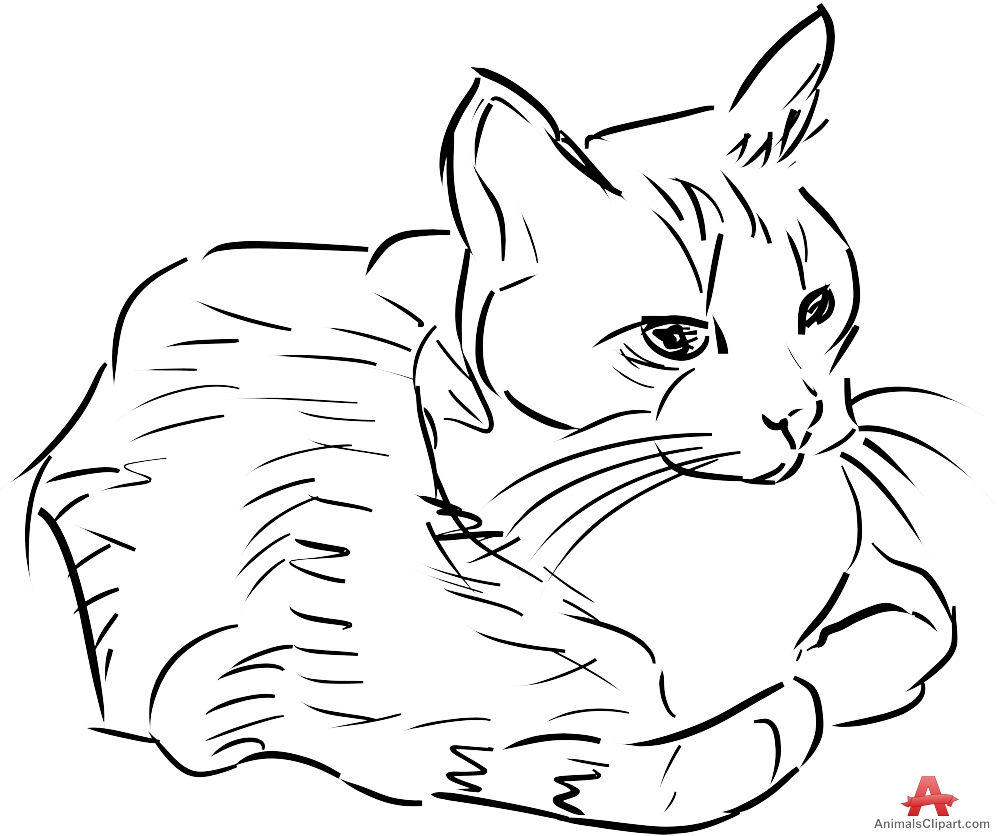 Sketch clipart cat Download Beautiful Clipart Design of