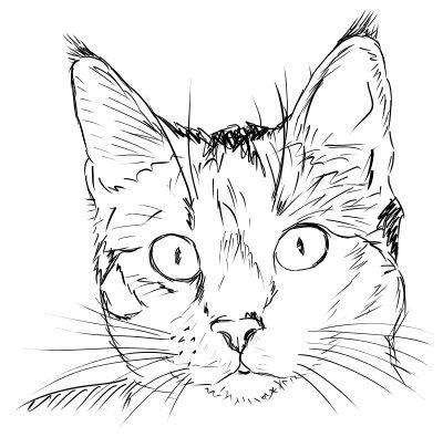 Realistic clipart cat face #1