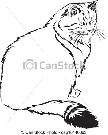 Sketch clipart cat Siberian cat of  flurry