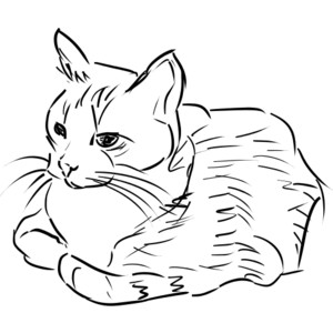 Sketch clipart cat @ cats Polyvore image public