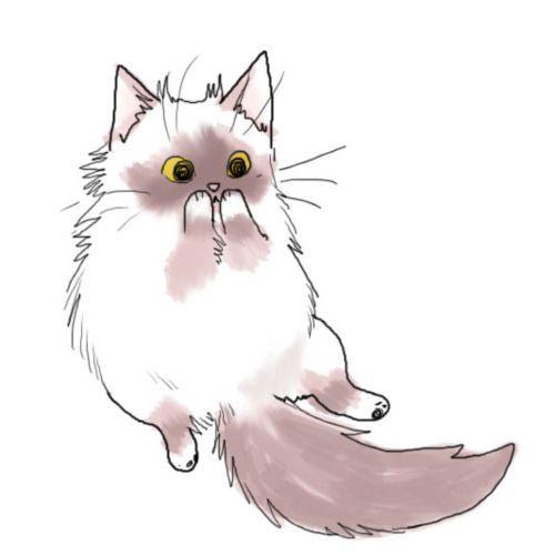 Persian Cat clipart kawaii cat Story drawing Cat for best
