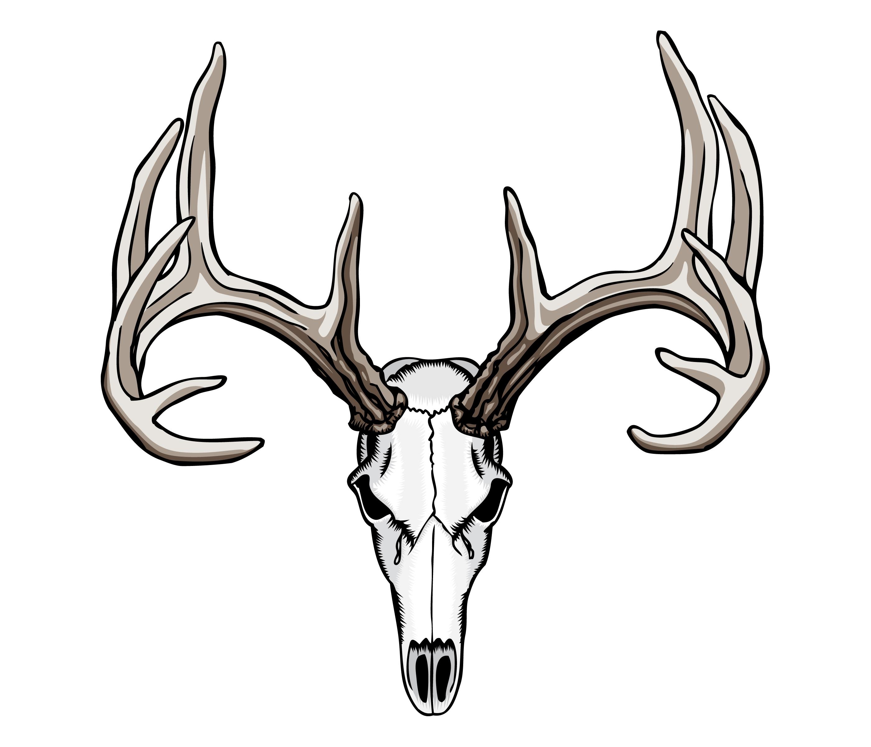 Buck clipart deer skull Deer Deer Tattoos Skull Nouveau