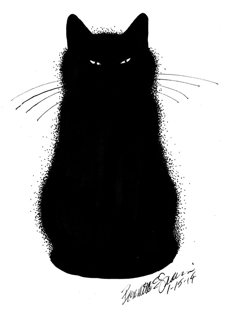 Sketch clipart face Clipart outline Cat and na