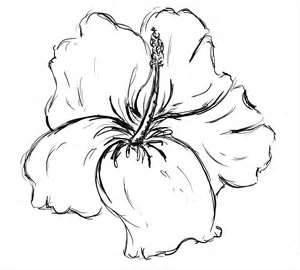 Drawn plant beautiful flower Drawing flower on 25+ Best