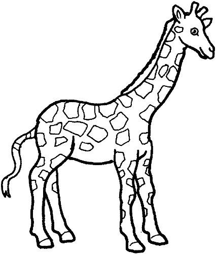 Black & White clipart giraffe Images Clipart Free Giraffe White