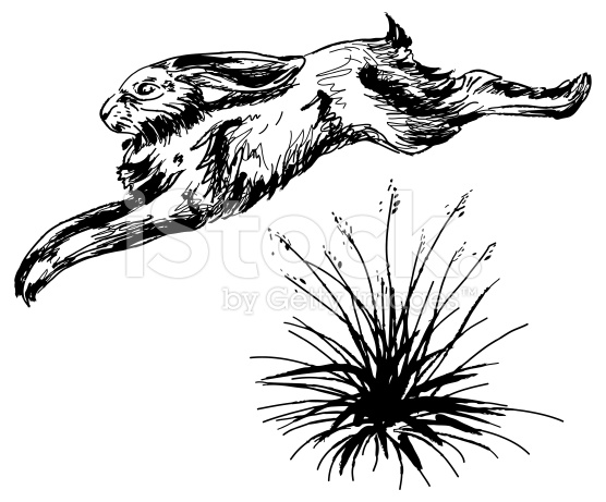 Sketch clipart grass Tattoo of stock over illustration