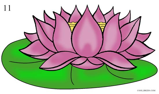 Sketch clipart lotus plant Lotus 11 to Flower by