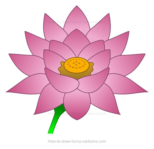 Sketch clipart lotus plant Flower drawing How to create