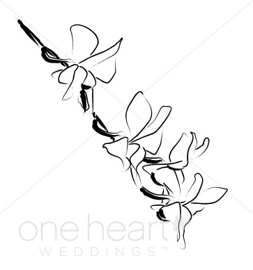 Sketch clipart orchid Wedding Wedding Orchid Wedding Summer