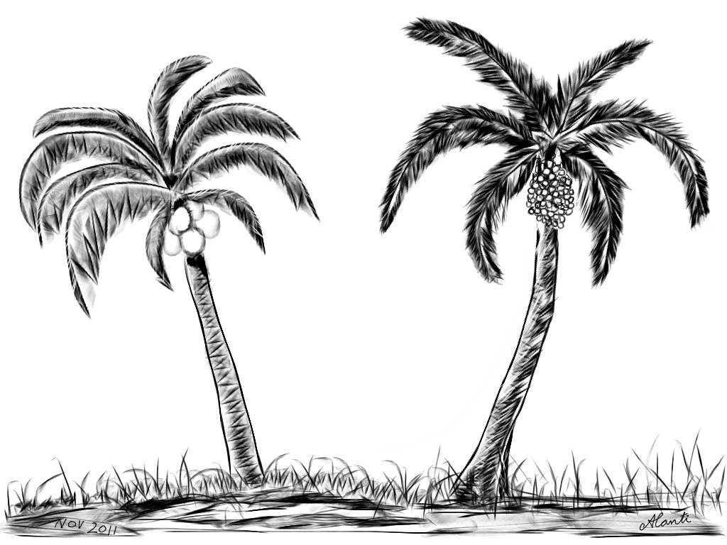 Palm Tree clipart group Free Art Drawings Art Palm