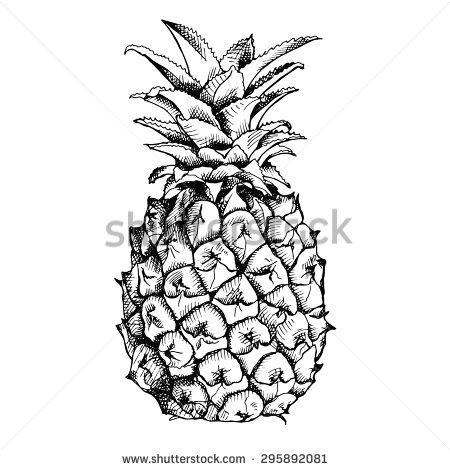 Pineapple clipart single fruit Black and white fruit Image
