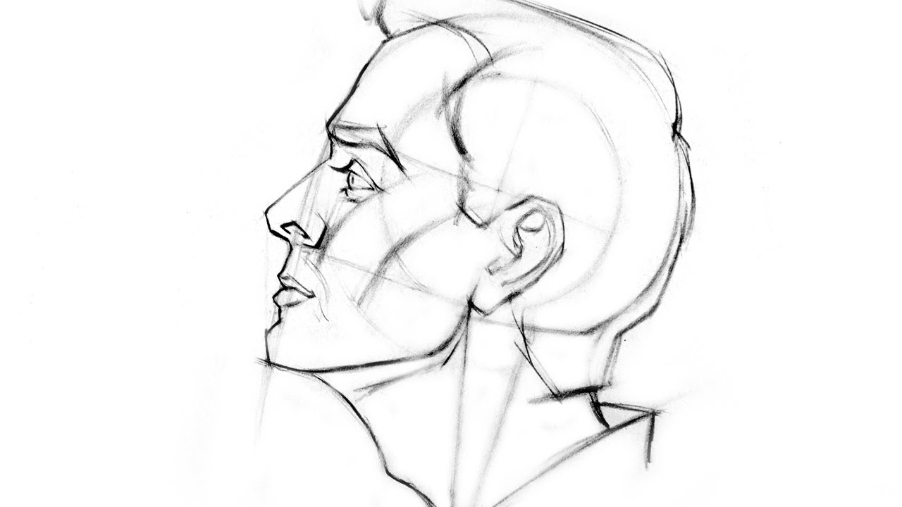 Drawn profile simple How View  Head to