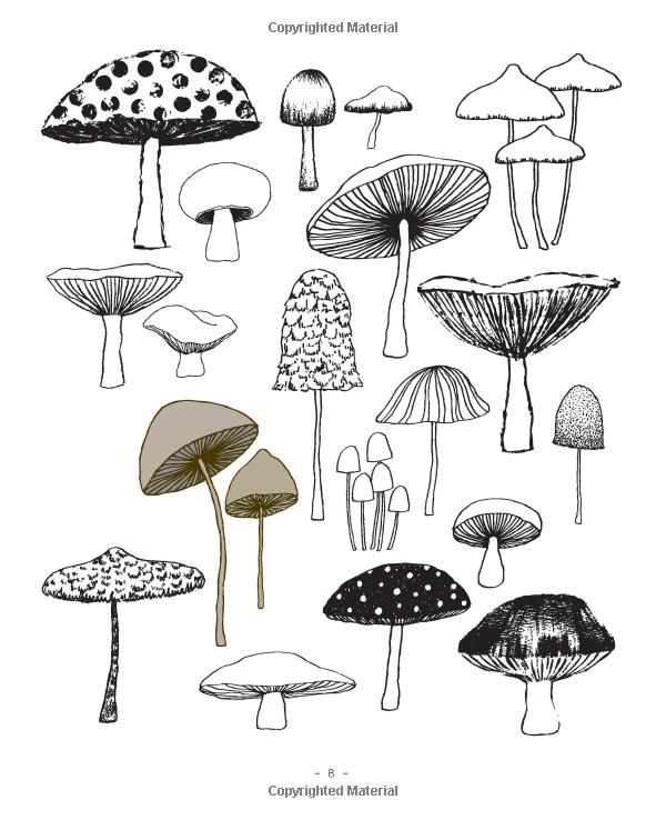 Sketch clipart sketchbook Nature: and 44 about from