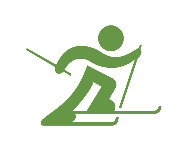 Ski clipart nordic skiing Skiing Vector country pictograms sports