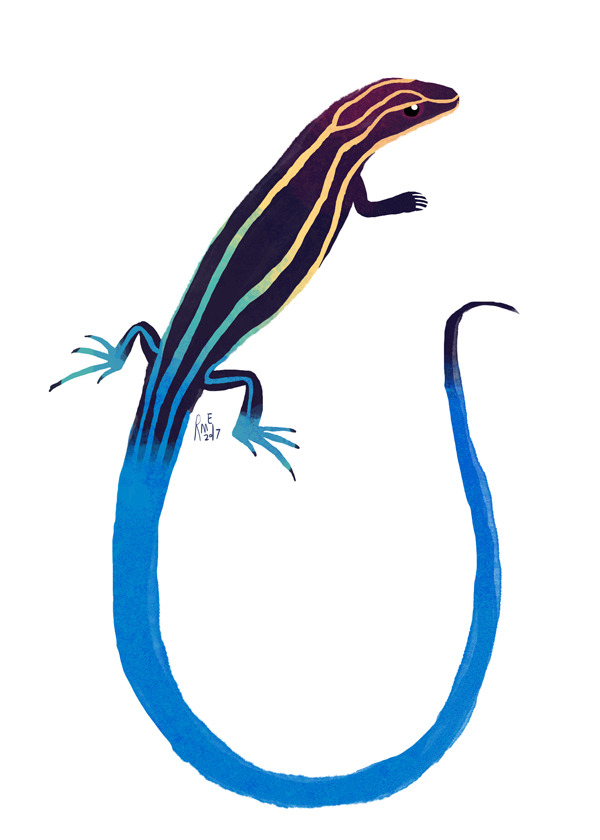 Skink clipart  lizard Tumblr blue tailed