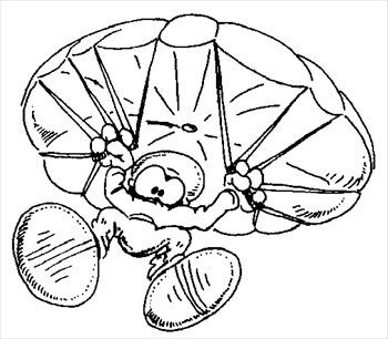 Skydiving clipart parachute jump Free Free Graphics Clipart and