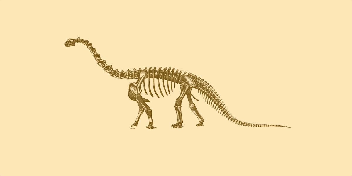 Sleleton clipart brachiosaurus Dinosaur art Brachiosaurus item? nerd