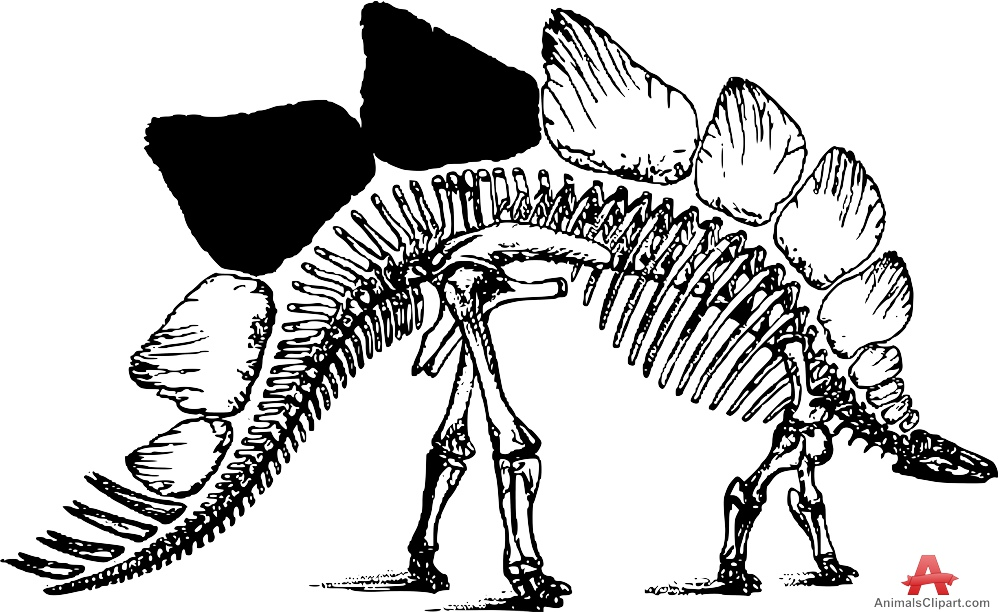 Stegosaurus clipart extinct animal Animals Skeleton Clipart the with