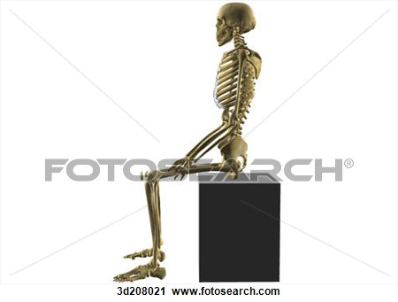 Sleleton clipart different position View position the View skeleton