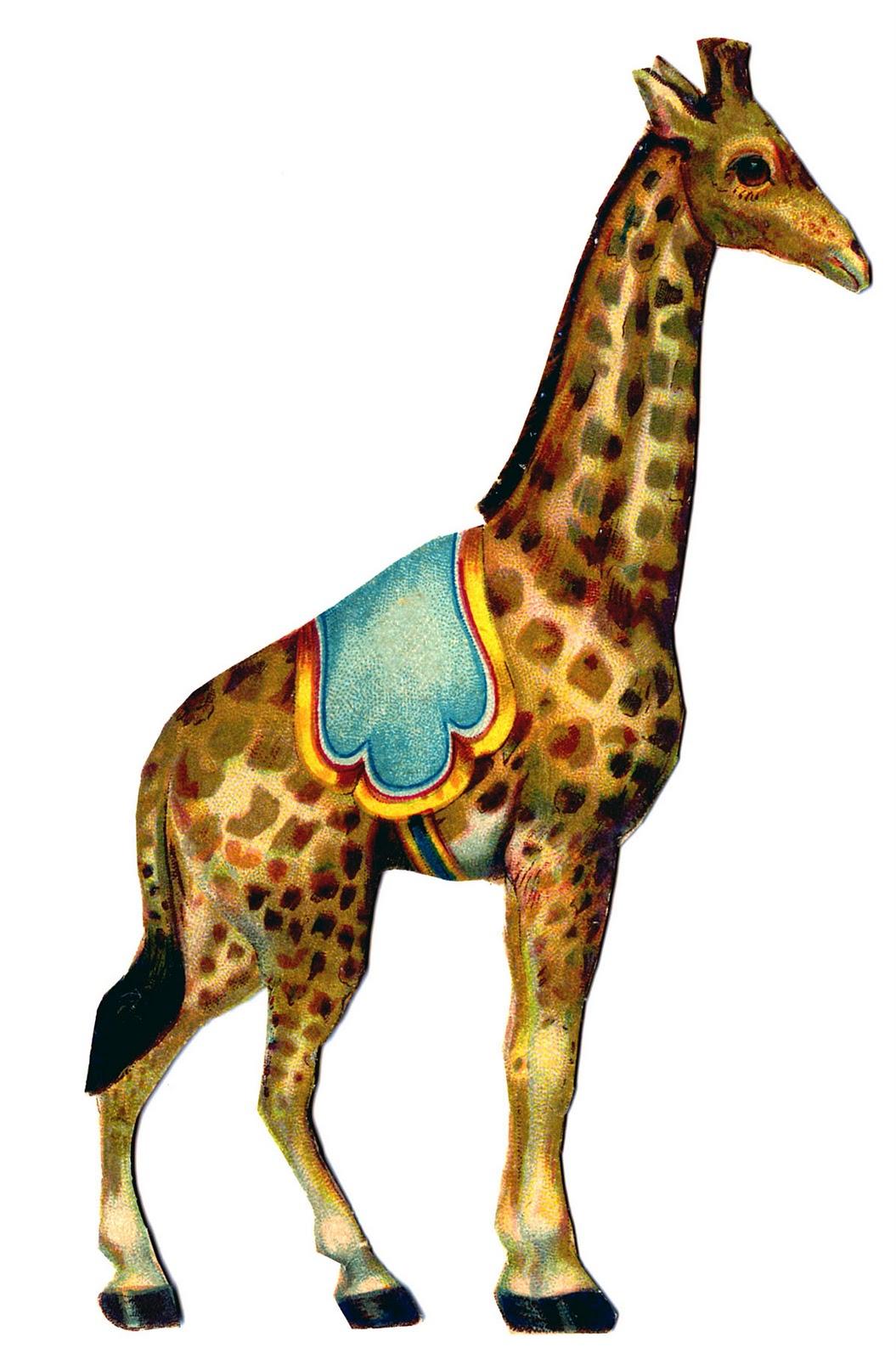 Sleleton clipart giraffe Graphics Graphic Vintage Circus Vintage