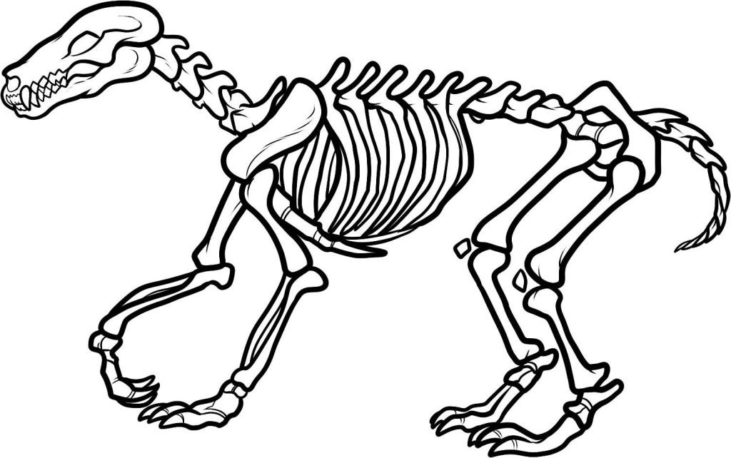 Sleleton clipart giraffe Dinosaur Clipart Coloring dinosaur%20skeleton%20coloring%20page Panda