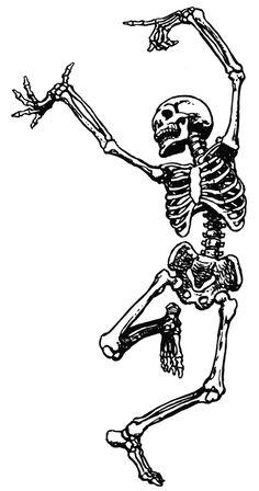 Sleleton clipart pencil work Tumblr: Illustrated Course http://illustratedanatomy Skeleton