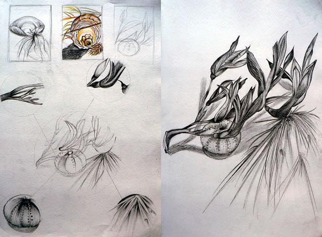 Sleleton clipart pencil work GCSE & Natural An sketchbook