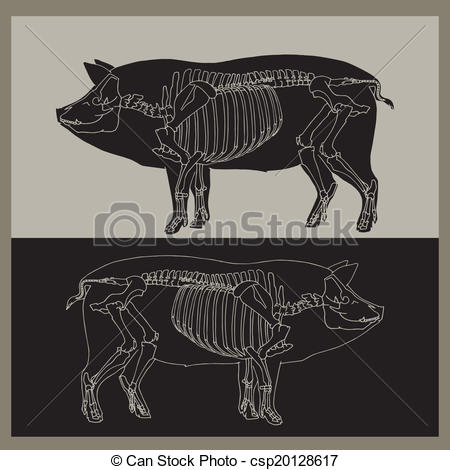 Sleleton clipart pig Pig Vectorby Clip EPS clip