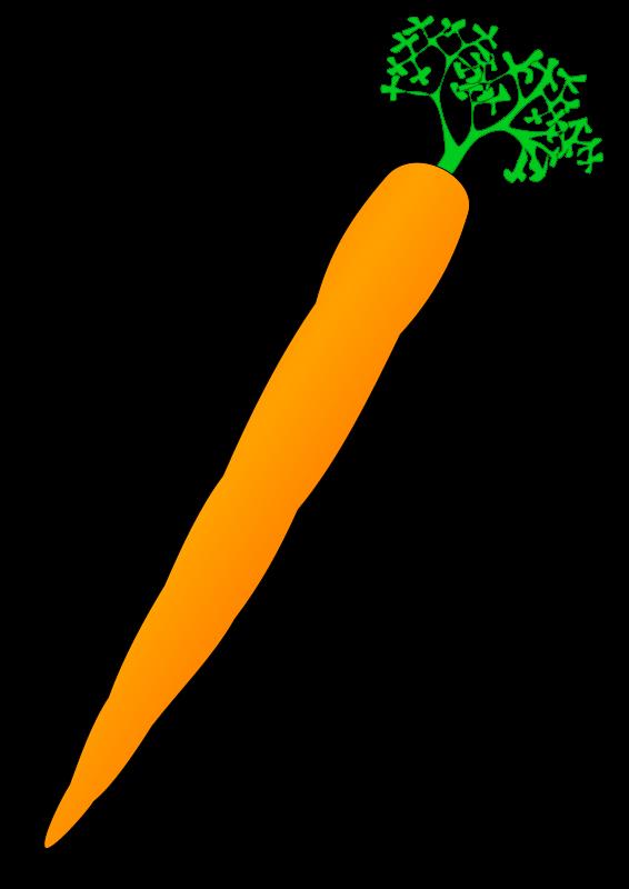 Slender clipart long Art Slender Carrot carrots8 Clip