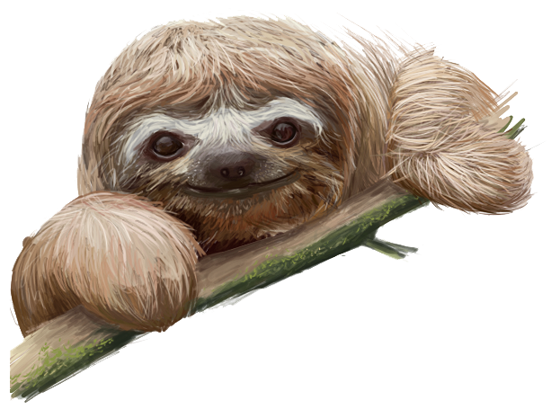 Sloth clipart Transparent hostted clip WikiClipArt art