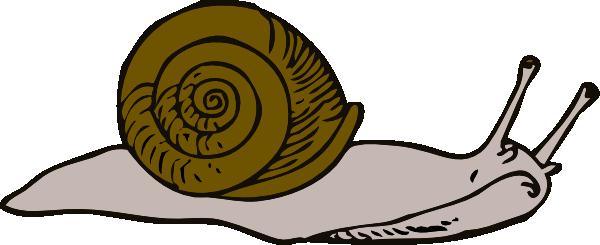 Slow clipart #8