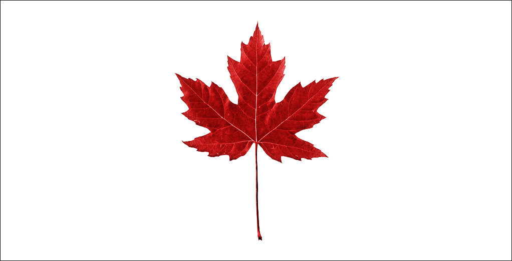 Small clipart maple leaf Maple Free Graphic Free Clip
